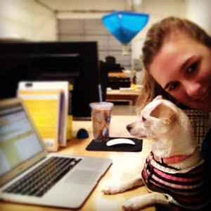 Kaia, our adopted puppy dog, assisting my at my desk here at Tag UR It! inc.!