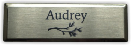 "1"" x 3"" Silver Beveled w/ Silver Face"