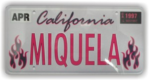 "Mini Custom Vanity Plate, Approx 2.5"" x 5"""